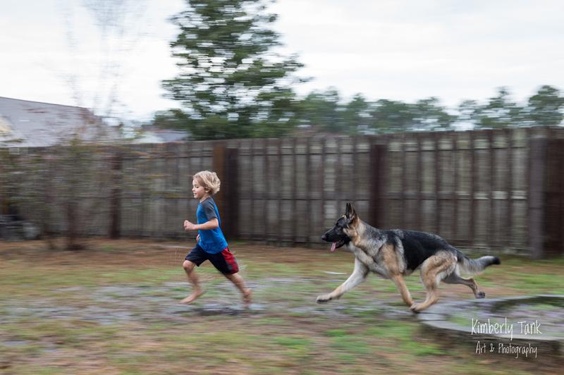 young boy and his German shepherd dog