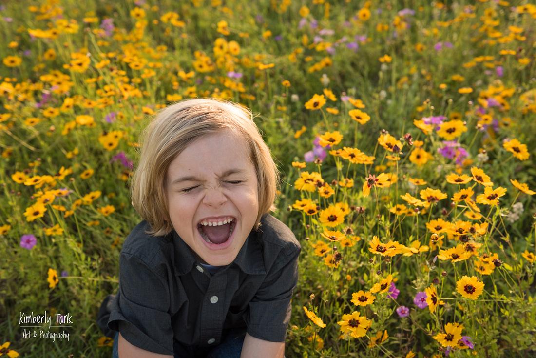 wildflower field at sunset