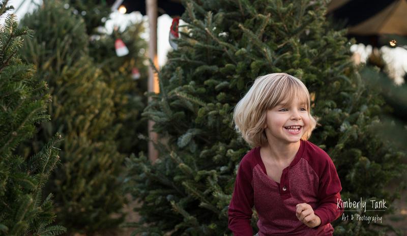 christmas tree lot farm
